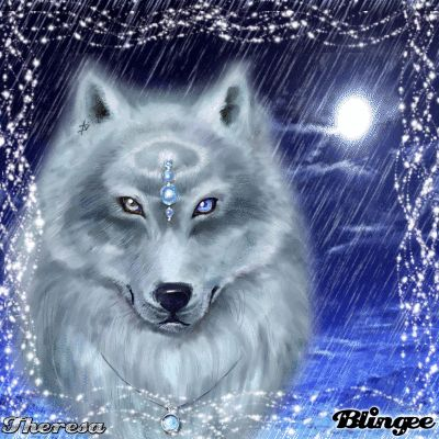 Drawn husky blingee Best this 176 ANIMAUX✿Loups on