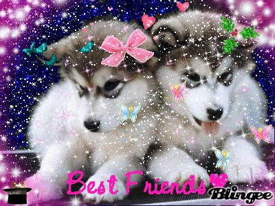 Drawn husky blingee Puppies on two husky cute