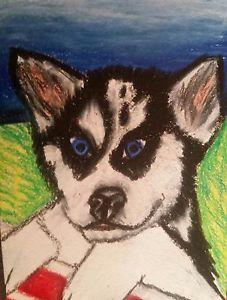 Drawn husky coyote Wolf alaskan siberian husky siberian