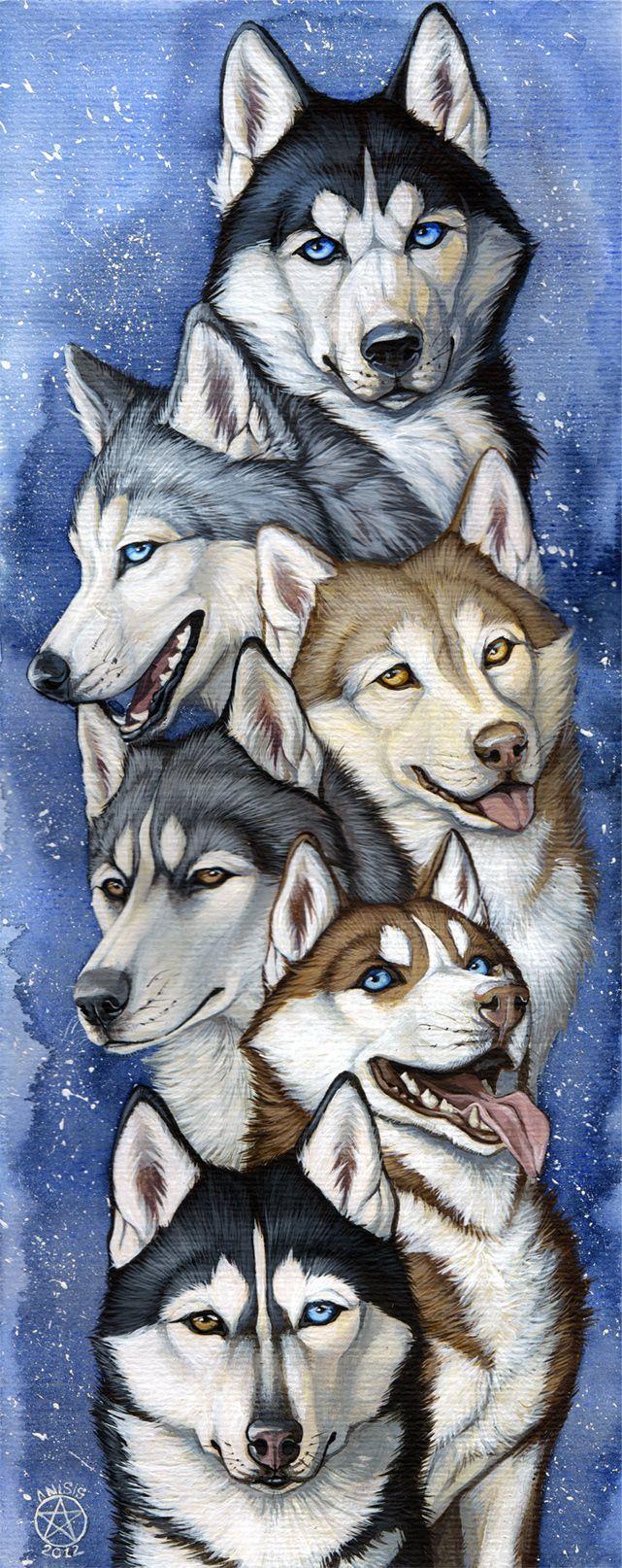 Drawn husky demon dog SIBERIAN dogs best Anisis HUSKIES