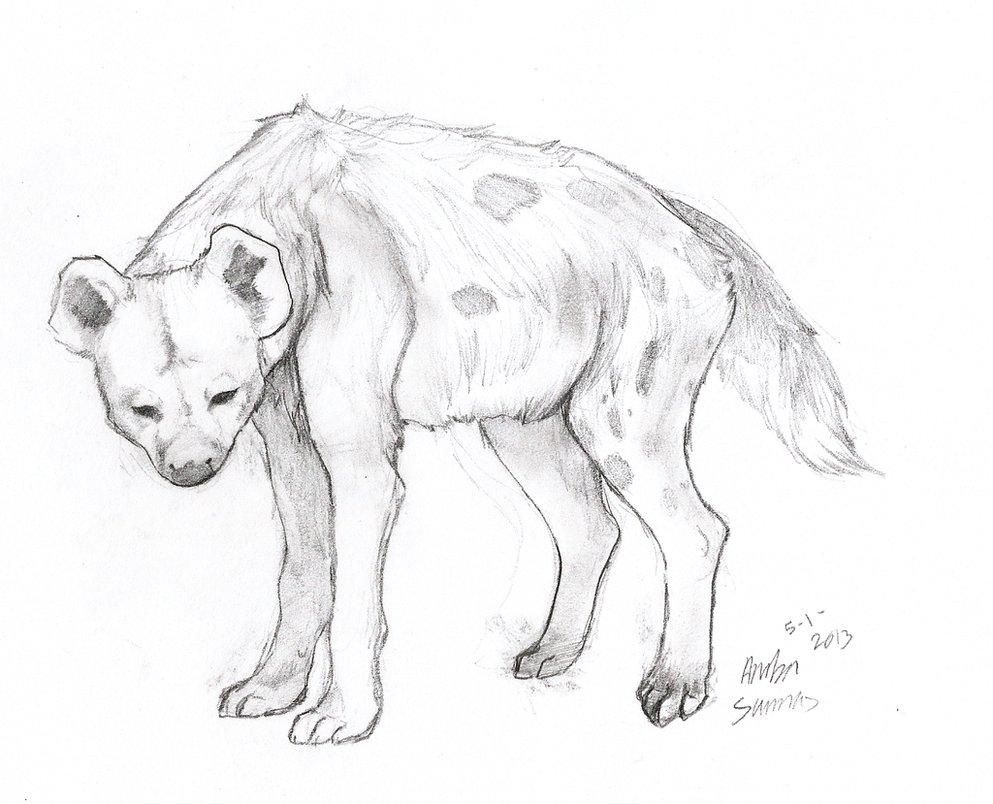 Drawn hyena FireFlufferz by DeviantArt by dumb