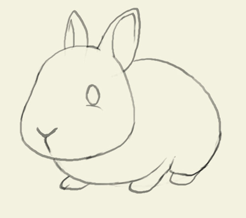 Drawn rabbit easy draw Drawing bunny and animals drawing