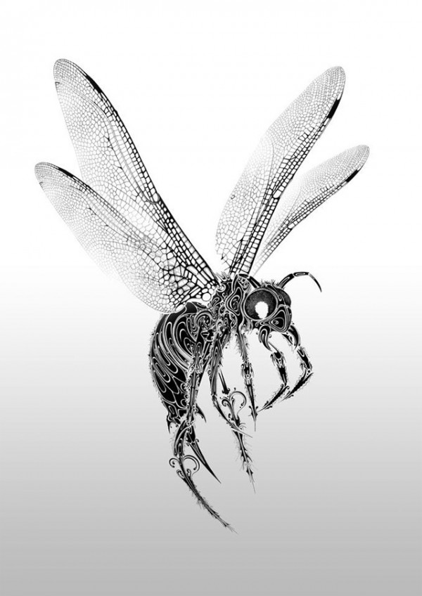 Drawn insect #7