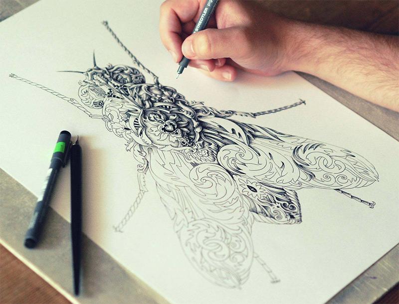 Drawn photos ornate 3 Alex by Konahin wings