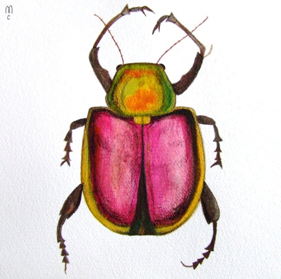 Drawn bug Ink Decor Art Original Insect