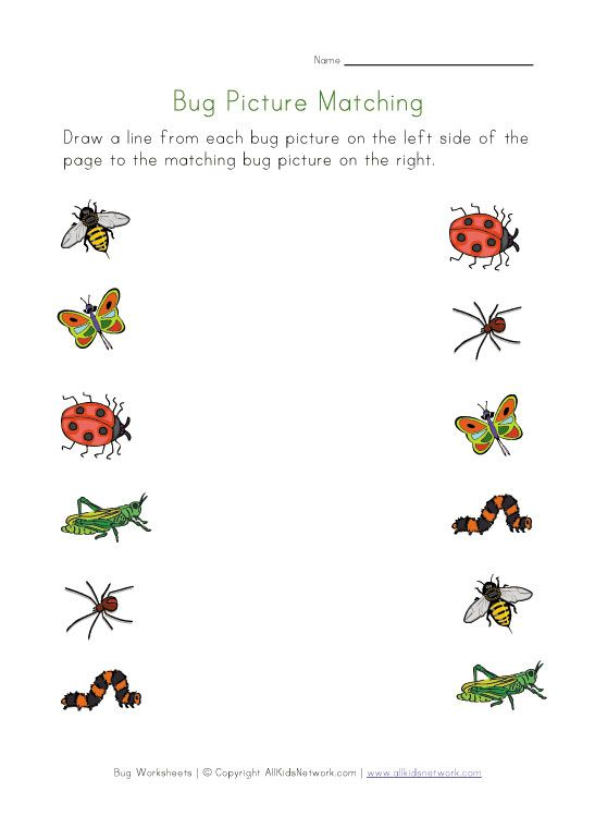 Drawn bugs kid Worksheets skills several for Best