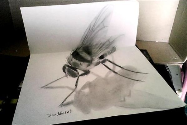 Drawn insect realistic Seems This A Jose 3D
