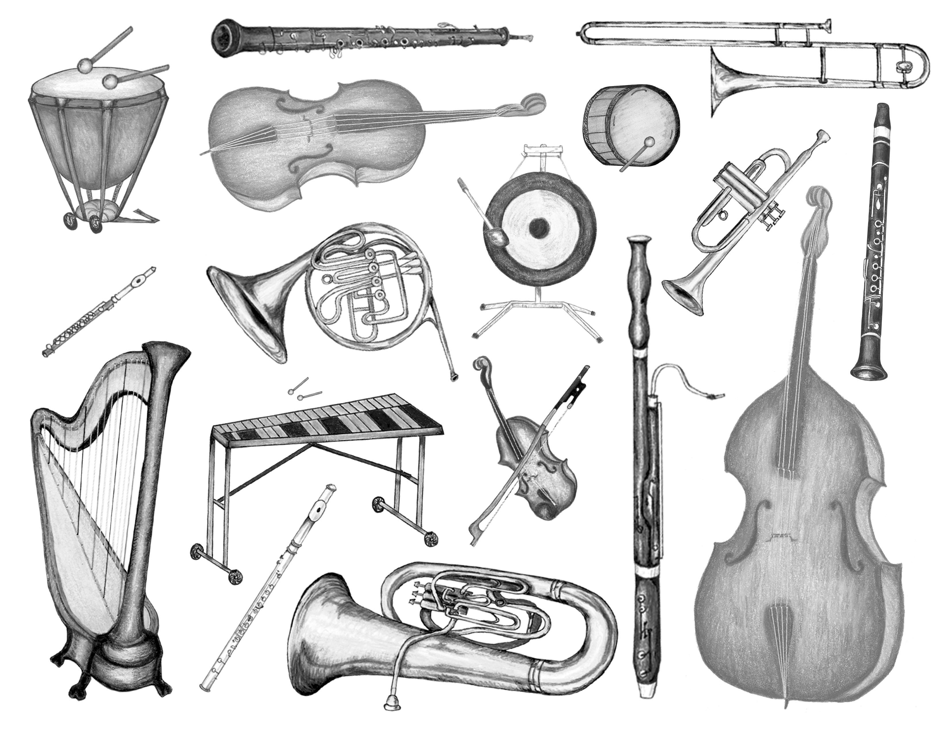 Drawn instrument orchestra music Tammy Bronson instruments Click Carter