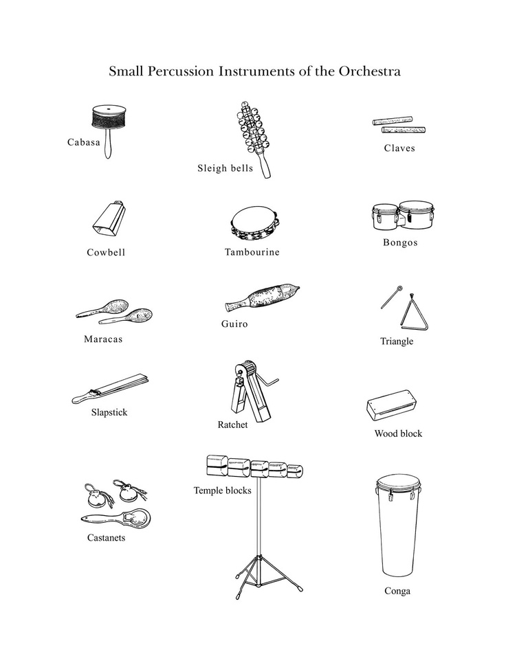 Drawn instrument percussion instrument Family percussion
