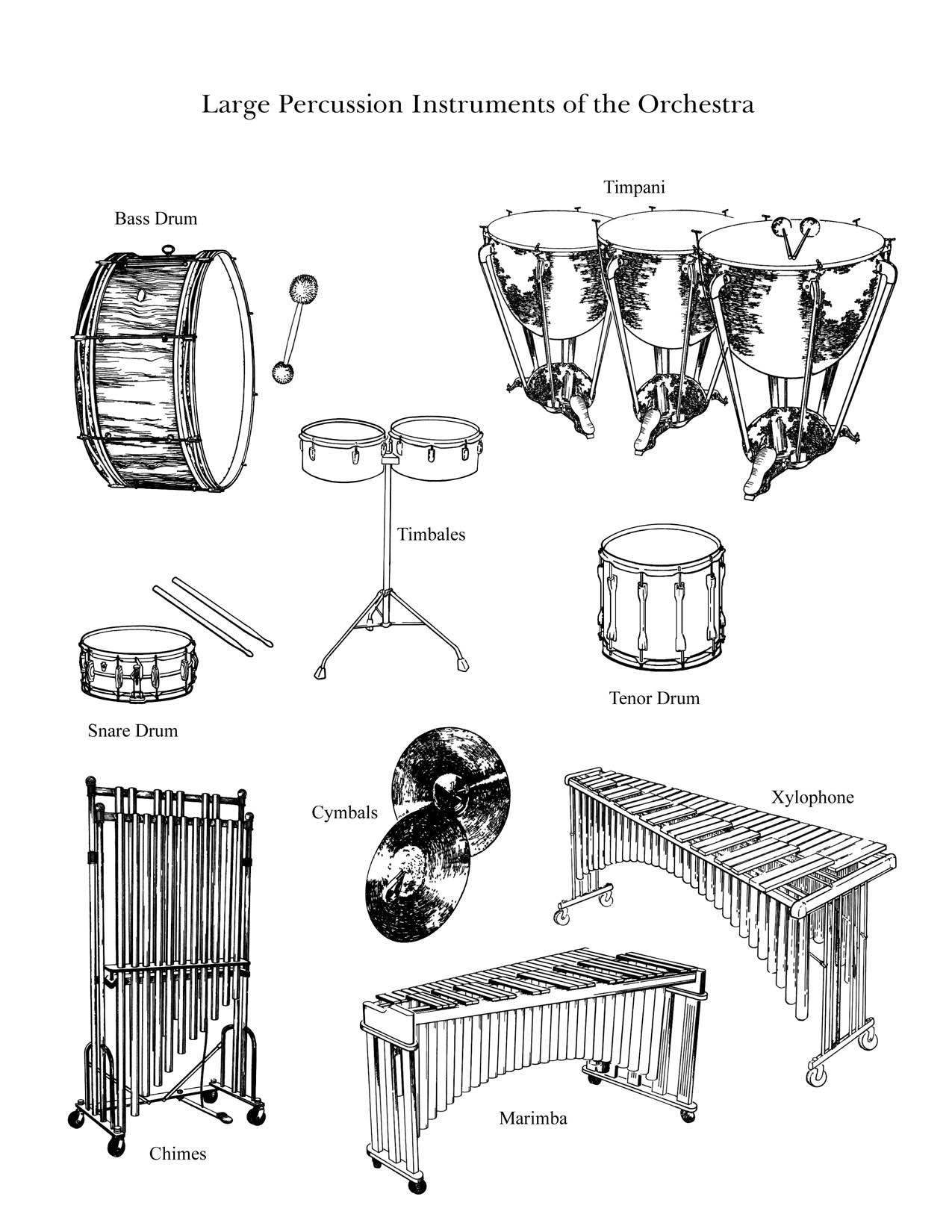 Drawn instrument percussion instrument Family family
