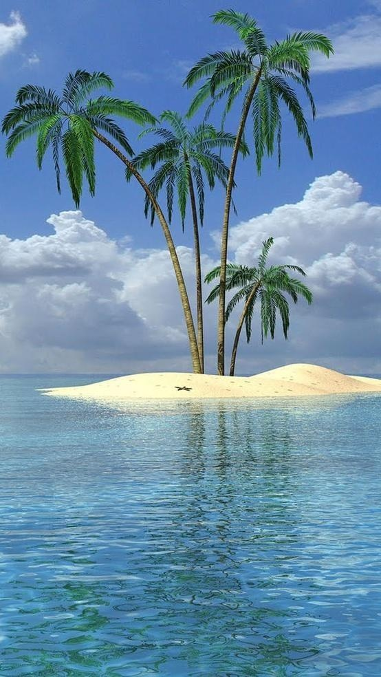 Islet clipart desert plant Reminds on great they that