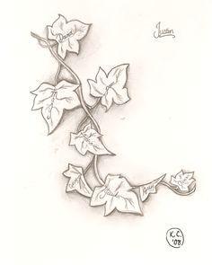 Drawn ivy Ivy Ivy tattoo symbols Leaf