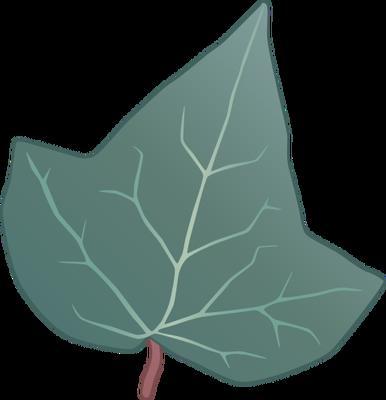 Drawn ivy ivy leaf Helix Ivy) Trees/Shrubs/Vines Hedera Illustration