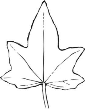 Drawn ivy ivy leaf Jewellery Handmade Leaf  Ivy