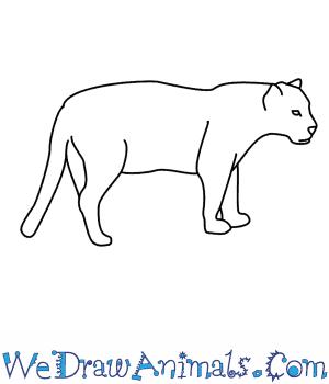 Drawn jaguar #1