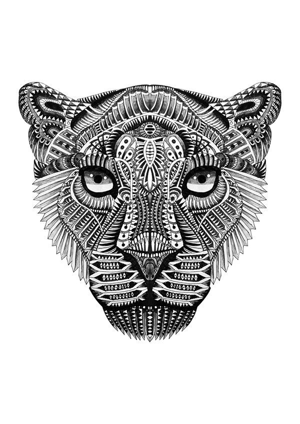 Drawn jaguar cougar Of drawn A flowers Cats