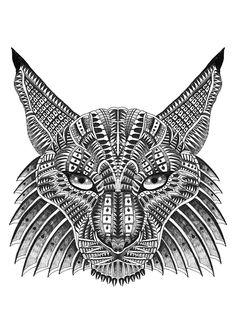 Drawn jaguar cougar Of drawn A Cats
