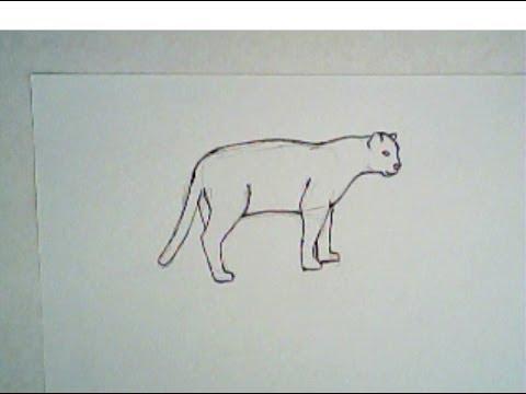 Drawn jaguar easy Tutorial) (simple tutorial) How How