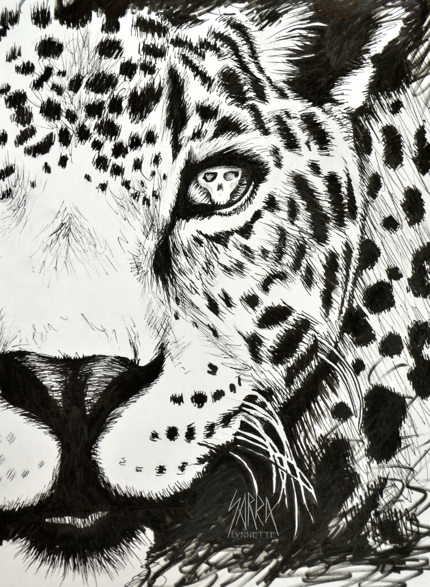 Drawn jaguar skull With skull Black drawing drawing