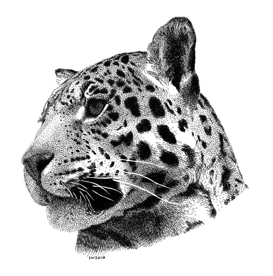 Drawn jaguar smoke B6503ef39203d26924b1580479f1f649 jpg Jaguar