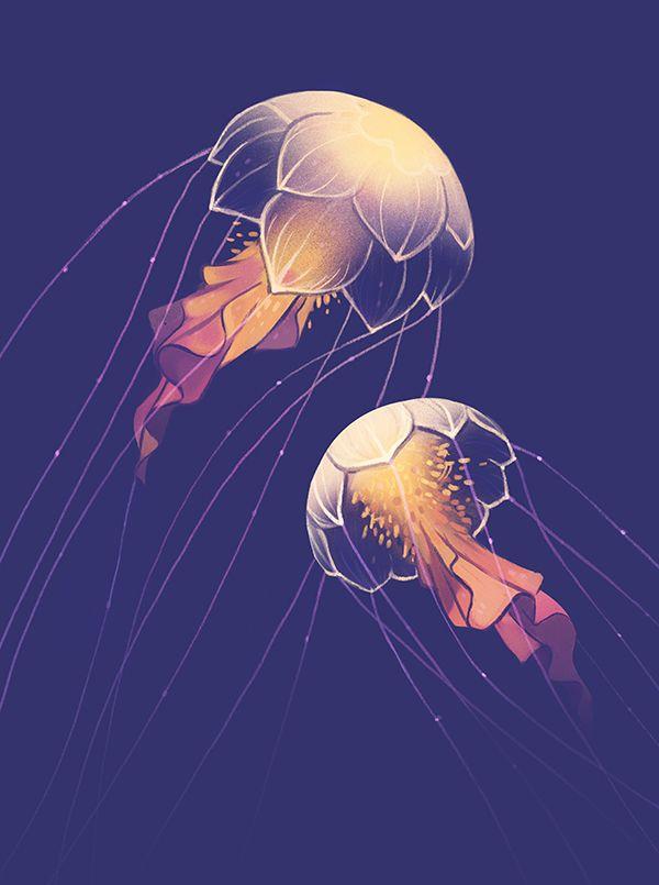 Drawn jellies #10