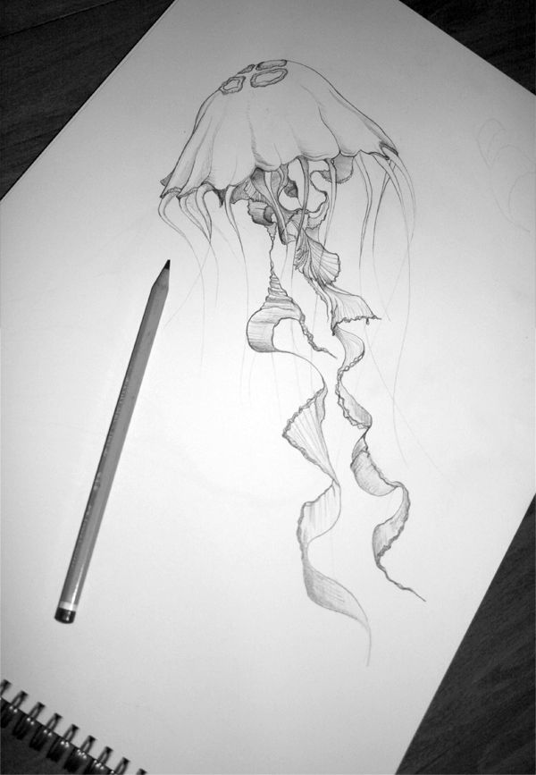 Drawn jellies #3