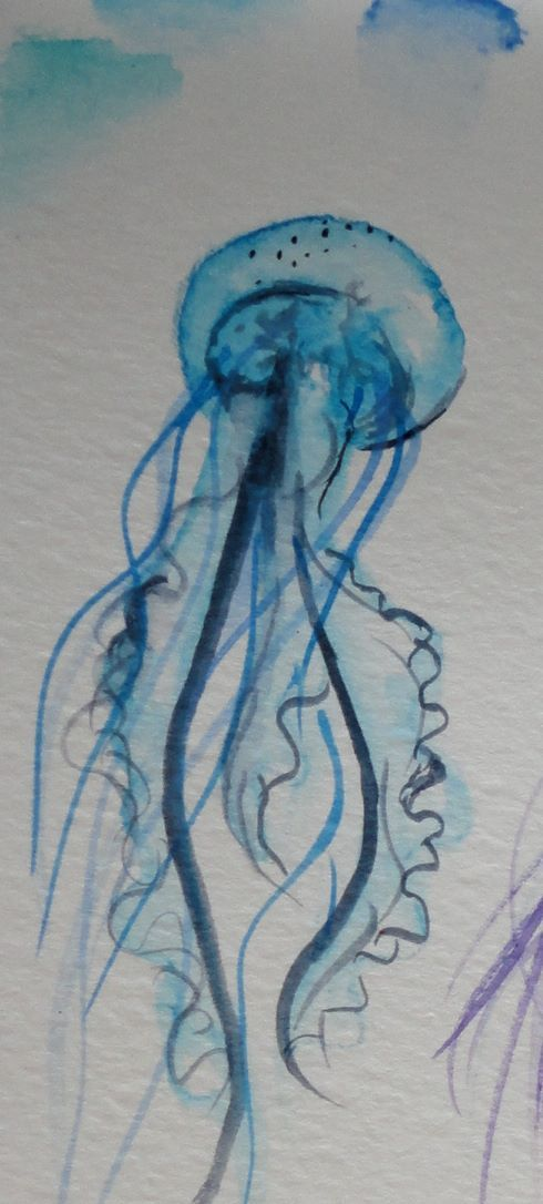 Drawn jellies felted 3d the blue Jellyfish meduse