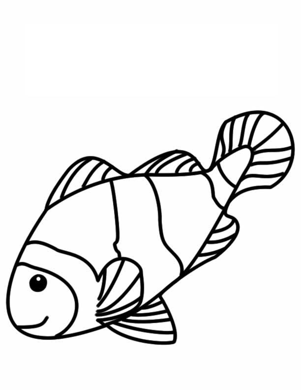 Drawn jellies little fish Clown  talking clownfish coloring