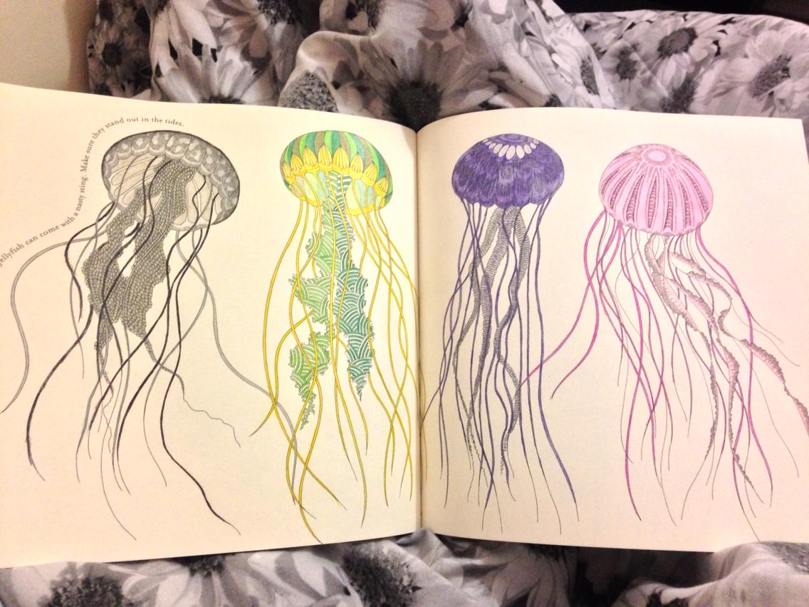 Drawn jellies millie marotta Jellyfish Jellyfish Pinterest Jellyfish millie