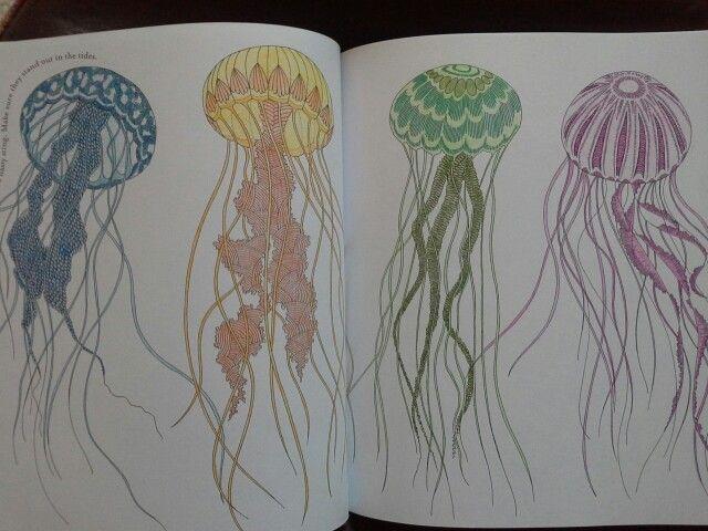 Drawn jellies millie marotta Kingdom Pinterest best on about