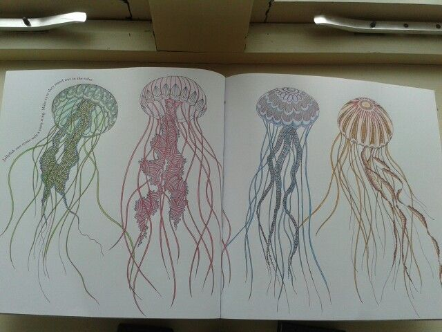 Drawn jellies millie marotta Marotta on 44 images Pinterest