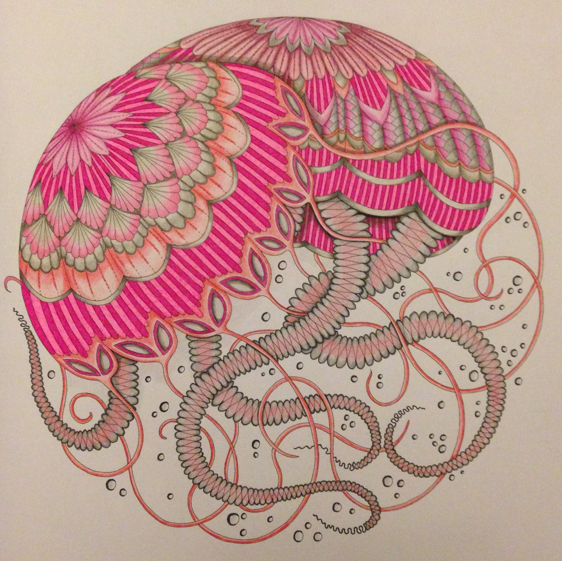 Drawn jellies millie marotta  completed from Wonderland Tropical