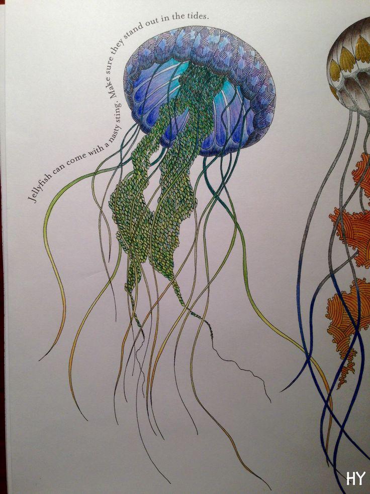 Drawn jellies millie marotta Kingdom in 177 animal the