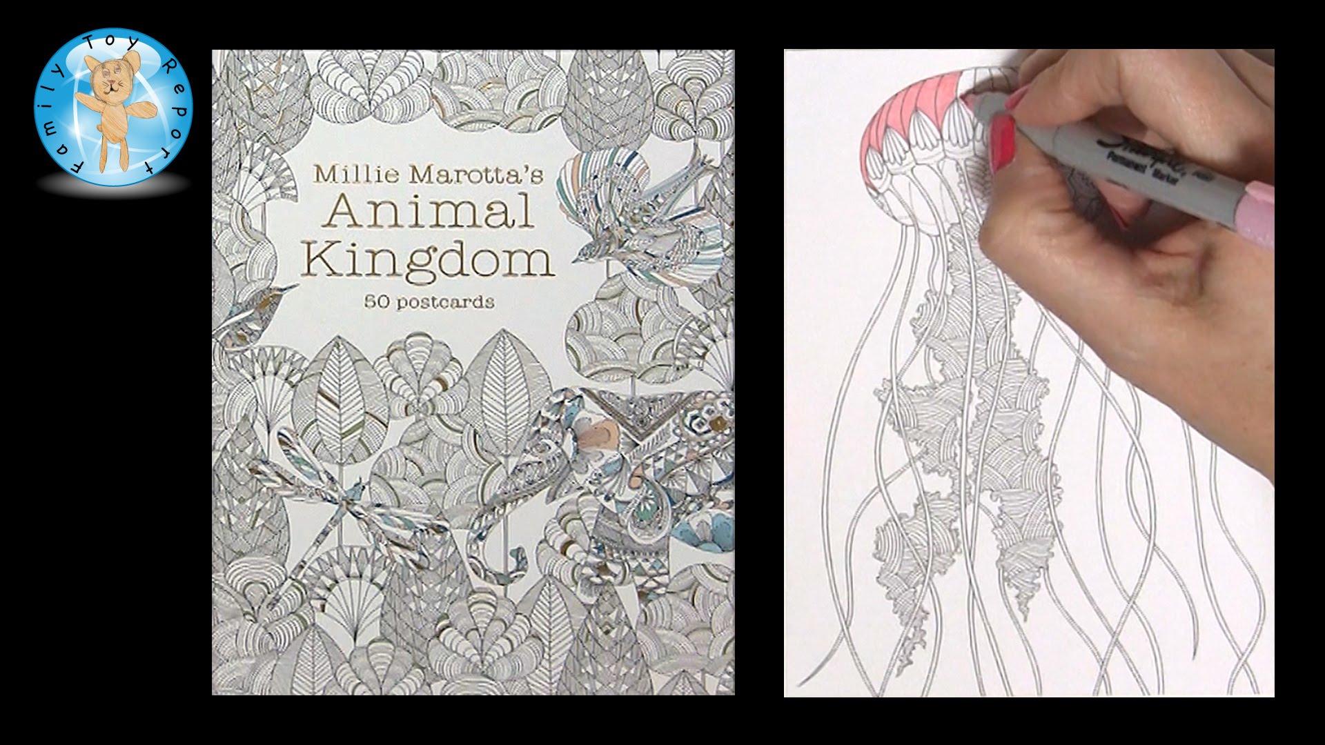 Drawn jellies millie marotta Kingdom Marotta's Adult Coloring Toy