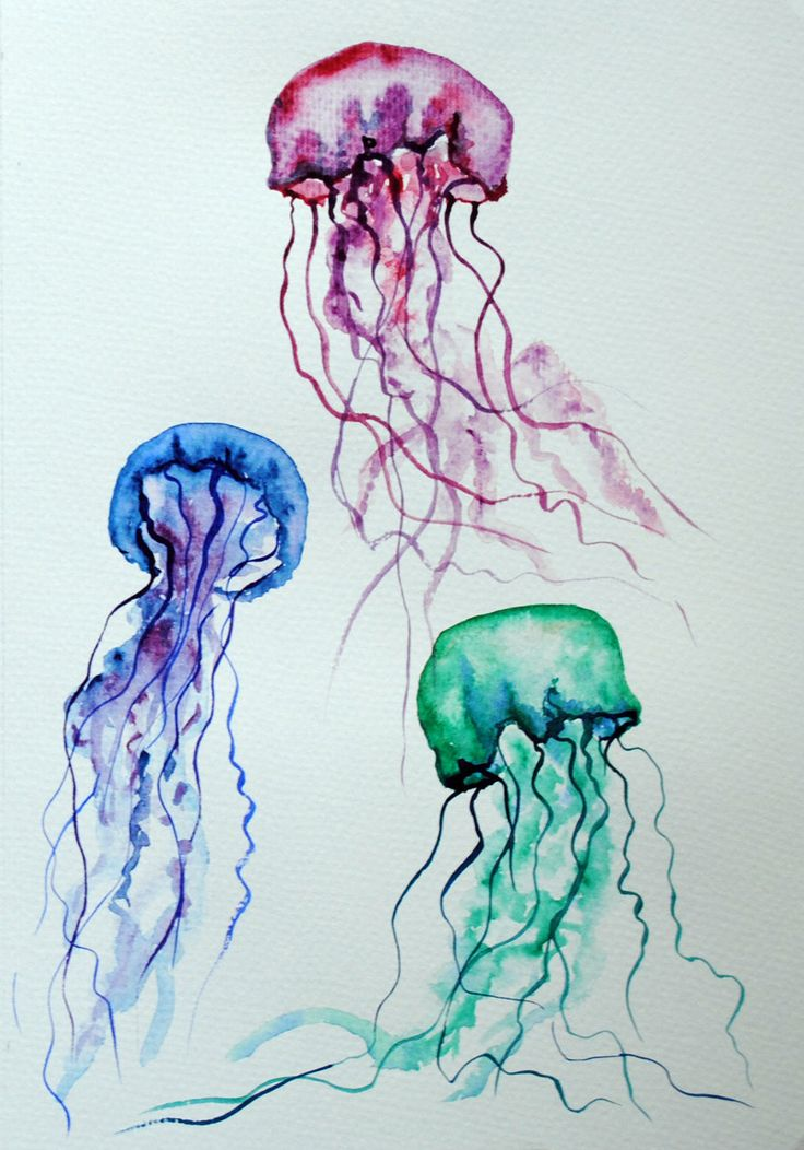 Drawn jellyfish little fish Pinterest on deviantART best Watercolor