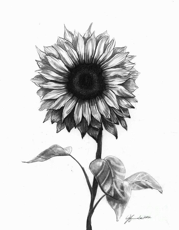Drawn amd sunflower Tattoos Love images Pinterest 123