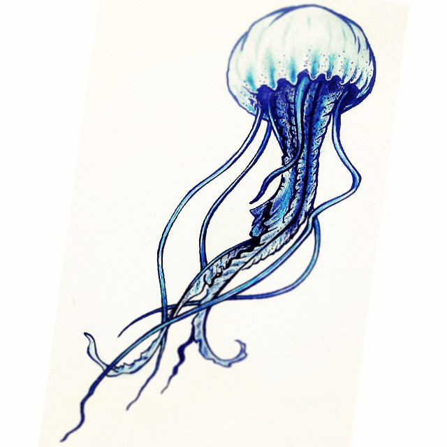Drawn jellyfish Drawing Drawing Jellyfish Realistic Pencil