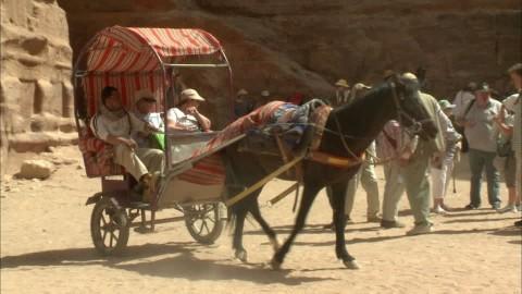 Drawn jordania 819 (Jordan) Video Horse
