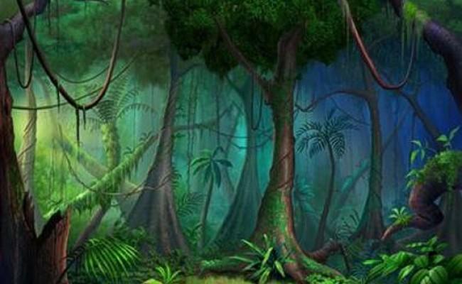 Drawn jungle Of on witness in went