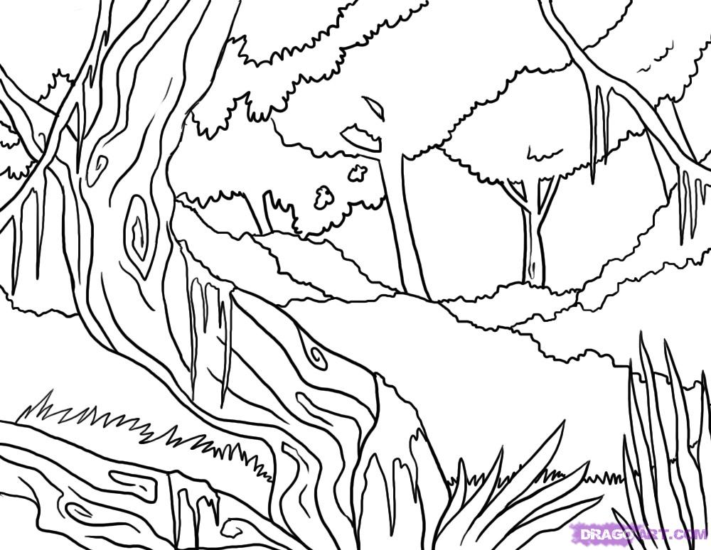 Drawn rainforest easy  jungle to Draw step