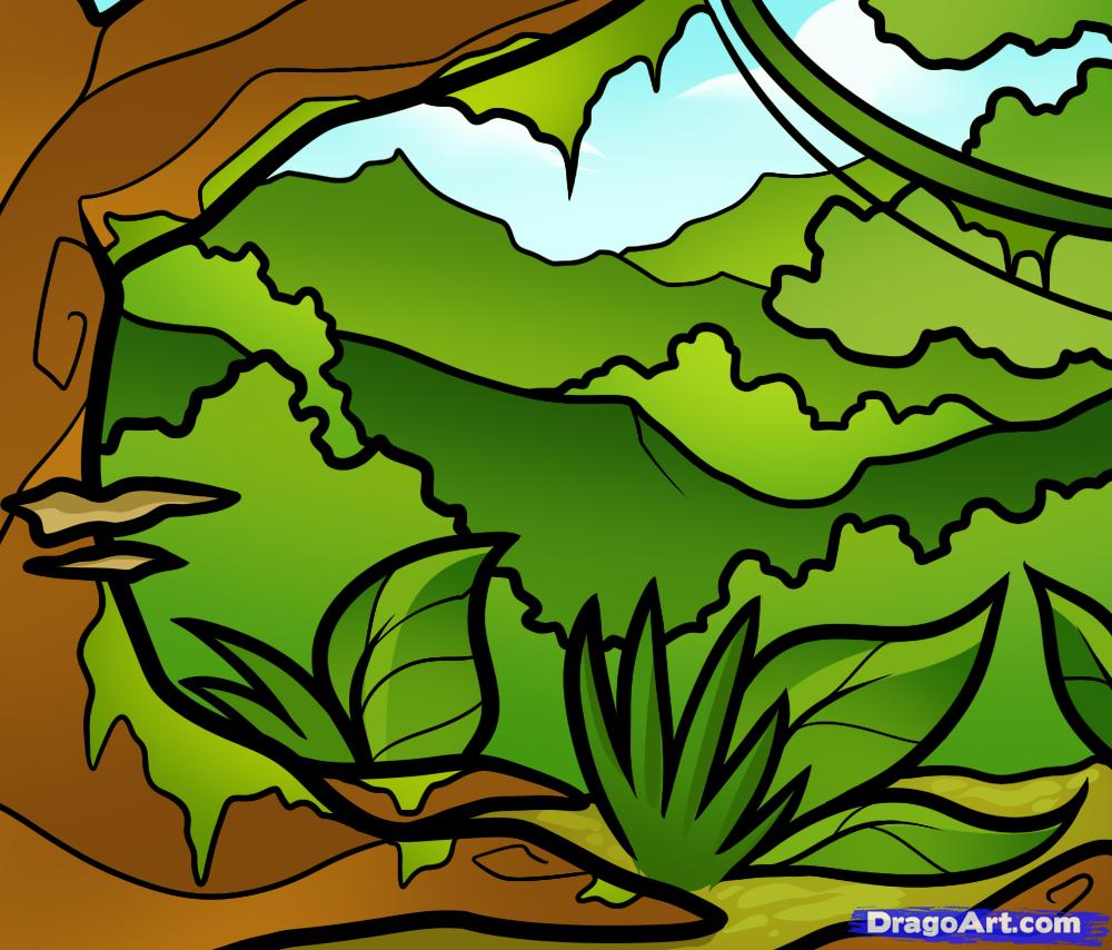 Drawn jungle A Step Kids Landmarks
