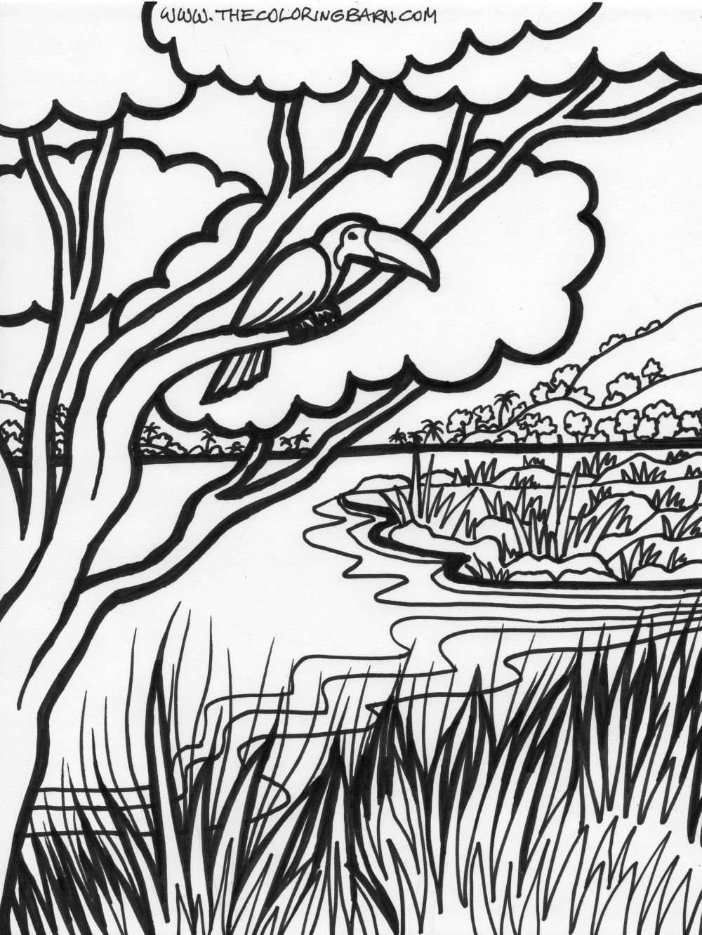 Drawn rainforest forest river Coloring Jungle of free Coloring