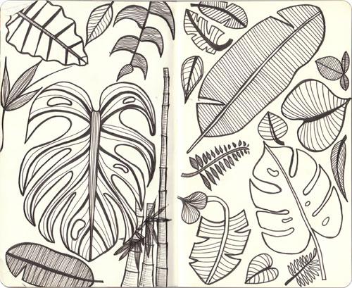 Drawn jungle jungle foliage Lovebird Jungle The  Stationery