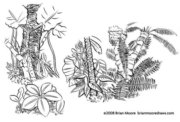 Drawn jungle jungle foliage Drawing House House Ideas for