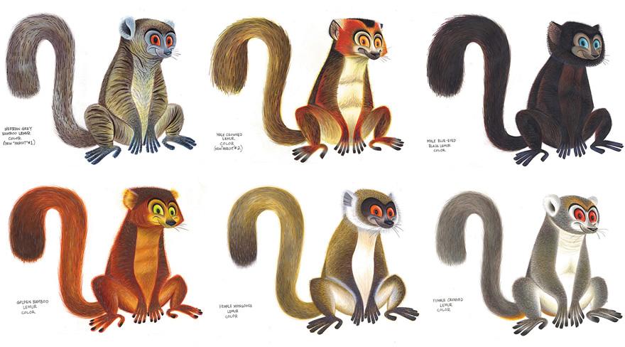 Drawn jungle madagascar And the on jungle design