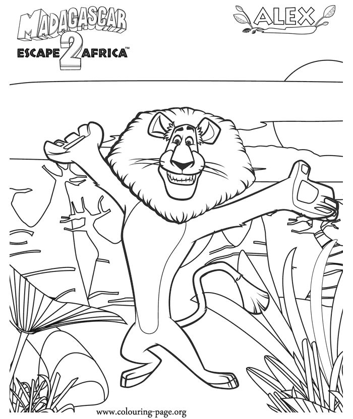 Drawn jungle madagascar Best the Lion page Pinterest