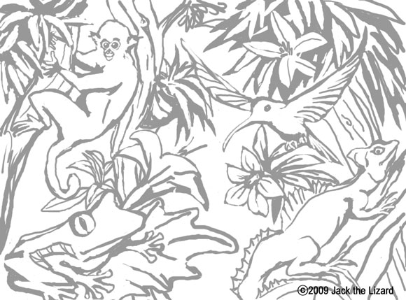Drawn rainforest jungle Coloring pages safari draw Pages