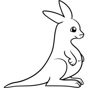 Drawn kangaroo Com for to how draw