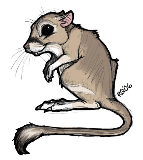 Drawn rat chibi Rat  Rat Rat Kangaroo