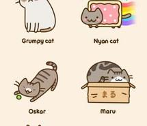 Drawn keyboard cat Funny Nyan on nyan images
